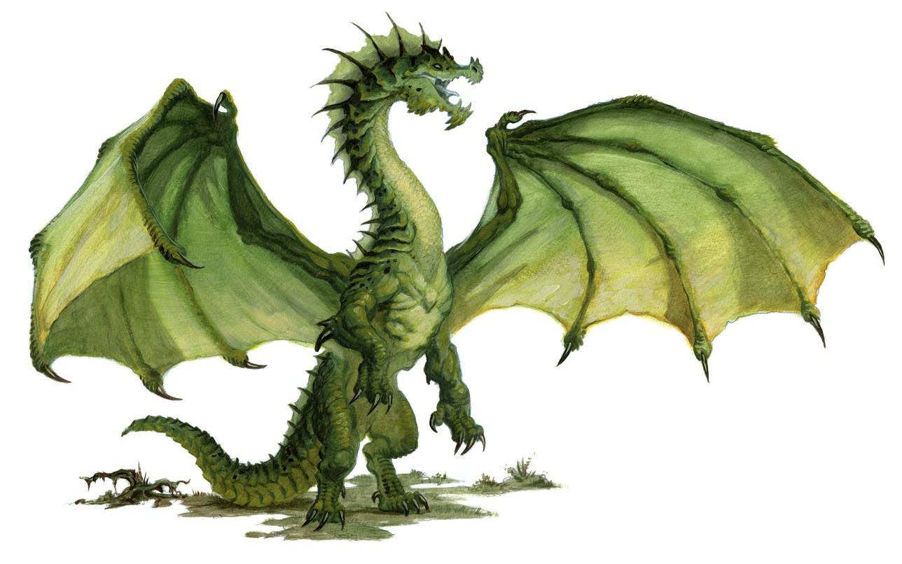 Image dd5-ragondin-ou-dragon-nain